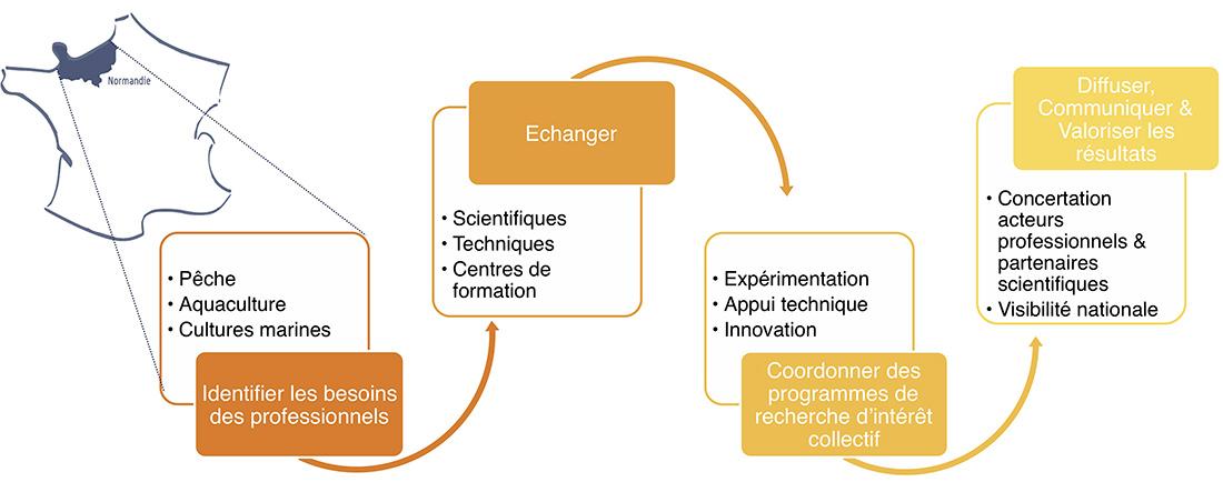 Schéma simplifié du fonctionnent du CENOPAC